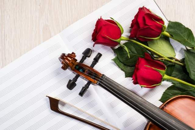 violin-rose-and-music-books