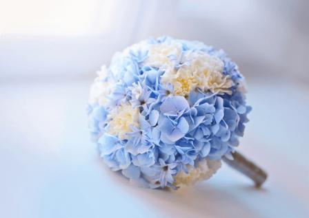 flower-blue-white